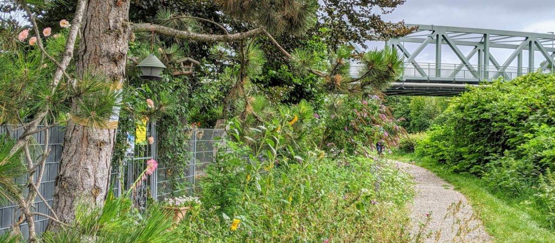 2021.09.23 Bild Blättchen mit Feldbrücke
